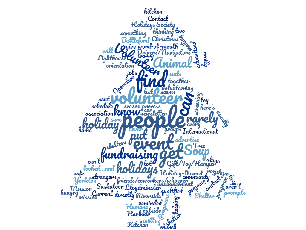 holiday volunteering word cloud